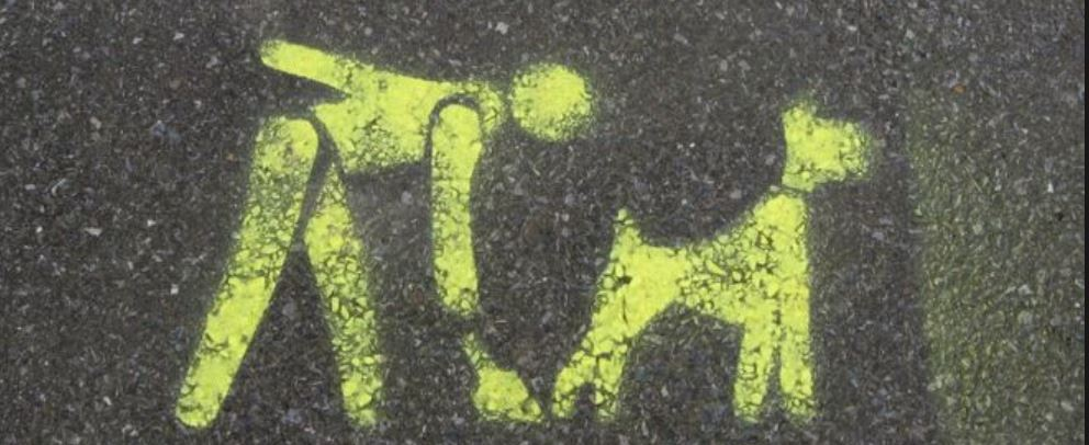 Dog Fouling and Dog Control