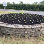 Flowers Now Planted